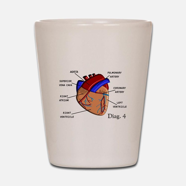 The heart Diagram BEST Shirts.PNG Shot Glass