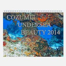 Cozumel Undersea Calendar