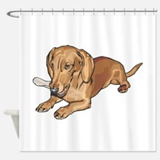 dachshund2.png Shower Curtain