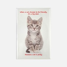 Picky Cat Rectangle Magnet