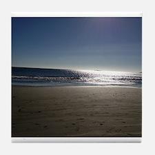 Doran Beach at Bodega Bay California Tile Coaster