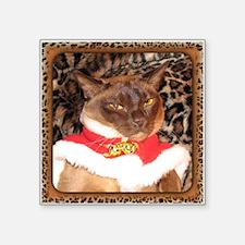 "Zander, King of Cats Square Sticker 3"" x 3"""