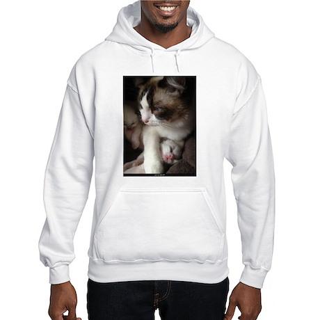 Ragalicious Ragdolls Hooded Sweatshirt