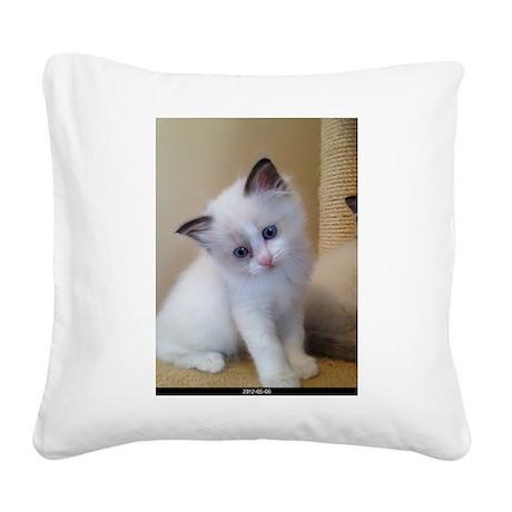 Ragalicious Ragdoll Kitten Square Canvas Pillow