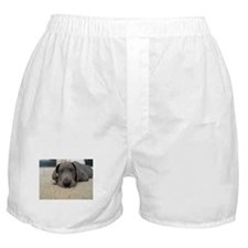 Unique Andrea Boxer Shorts