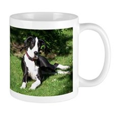 apparel Mug