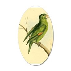Pretty Green Parrot Wall Decal