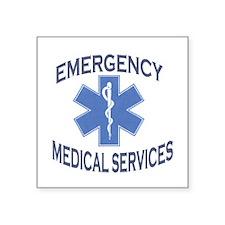 EMS Oval Sticker
