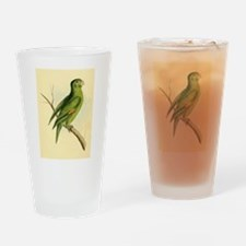 Pretty Green Parrot Drinking Glass
