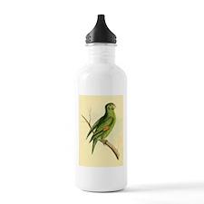 Pretty Green Parrot Water Bottle