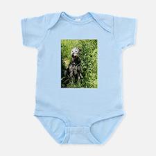 Lurcher Infant Creeper