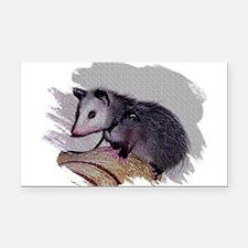Baby Possum Rectangle Car Magnet