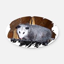 possum00.png Oval Car Magnet