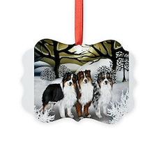 Cute Australian shepherd Picture Ornament