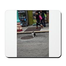San Francisco Street Cat Mousepad