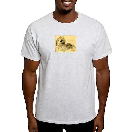 Drunken Tanuki Ash Grey T-Shirt