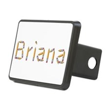Briana Pencils Hitch Cover