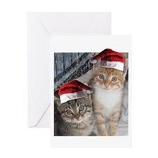 Christmas Tabby Cats Greeting Card