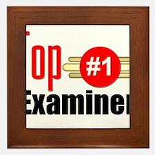 Top Examiner Framed Tile