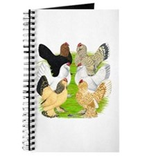 Six DUccle Hens Journal