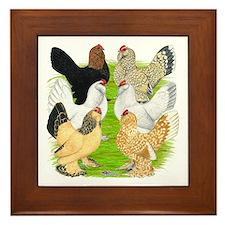 Six DUccle Hens Framed Tile