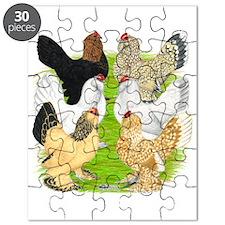 Six DUccle Hens Puzzle