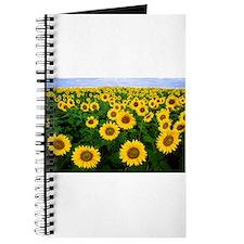 Field of Flowers Journal
