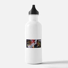 otto Water Bottle