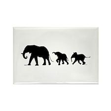 Elephant Rectangle Magnet Magnets