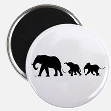 "Elephant 2.25"" Magnet (100 Pack) Magnets"