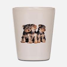 Yorkie Puppies Shot Glass