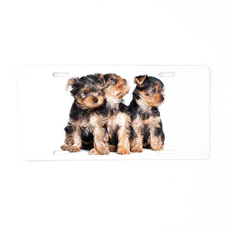 Yorkie Puppies Aluminum License Plate