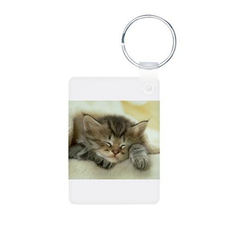 sleeping kitty Aluminum Photo Keychain