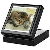 Kittens Keepsake Boxes