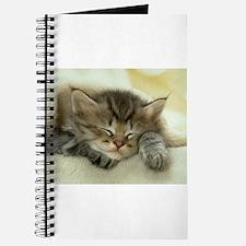 sleeping kitty Journal