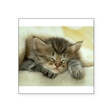 "sleeping kitty Square Sticker 3"" x 3"""