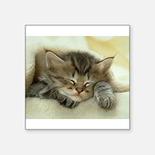 "sleeping kitty Square Sticker 3"" x 3"""