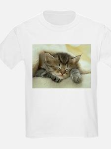 sleeping kitty T-Shirt