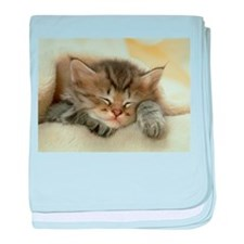 sleeping kitty baby blanket