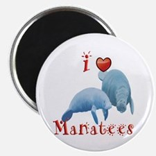 Manatee Magnet