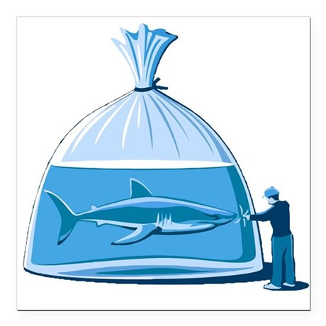 """Shark in a Bag Square Car Magnet 3"""" x 3"""""""