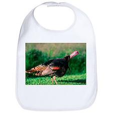 Wild Turkey Stare Bib