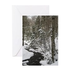 Adirondack Winter Scene Greeting Card