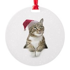 Merry Bright Cat Ornament