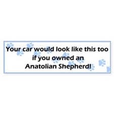 Your Car Anatolian Shepherd Bumper Bumper Sticker
