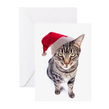 Bad Santa Cat Christmas Cards (Pk of 10)