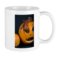 Snake In Pumpkin Mug