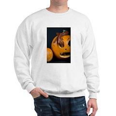 Snake In Pumpkin Sweatshirt
