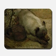 Momma Bear and Curled Cub (Mousepad)