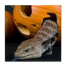 Lizard in Pumpkin Tile Coaster